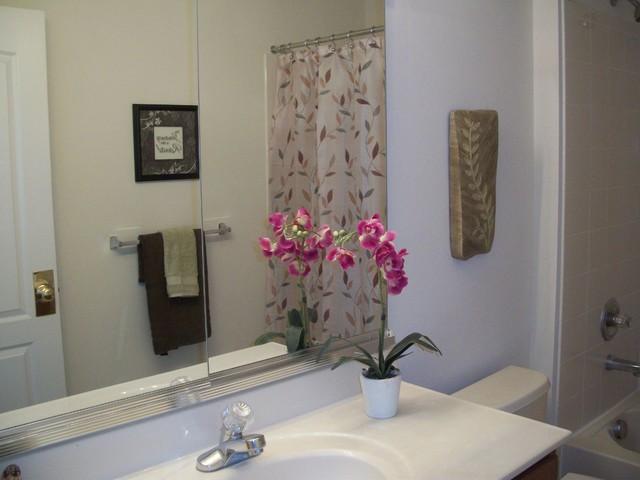 Home Staging Ashburn, VA traditional-bathroom