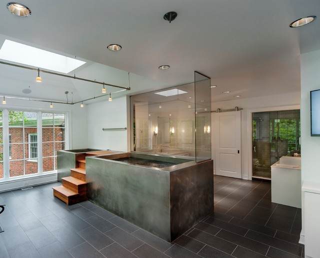 Hot Tub Cold Plunge Pool Modern Bathroom Other Metro
