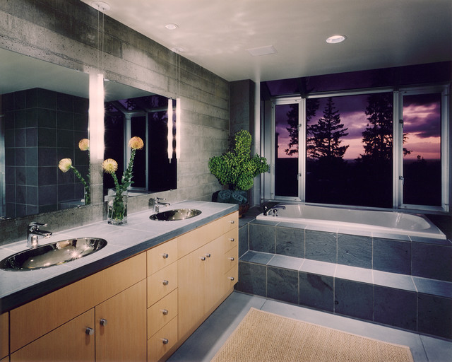 House in a Mountain Meadow contemporary bathroom