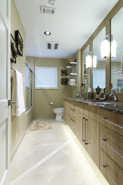 Houston contemporary home contemporary bathroom for Bathroom interior design houston