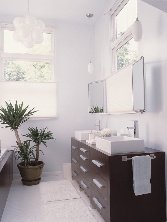 3 Way Mirror Bathroom Design Ideas Pictures Remodel Decor
