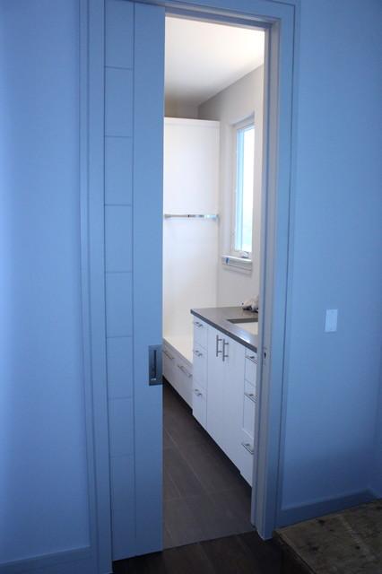 Interior Modern Pocket Door