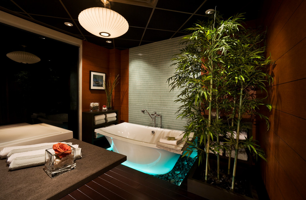 Inspiration for a bathroom remodel in DC Metro