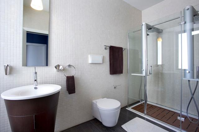 Ioanid Penthouse contemporary-bathroom