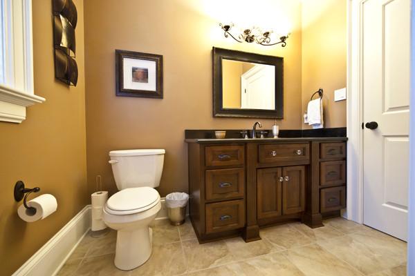 Keith & Debbie traditional-bathroom