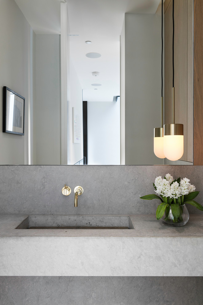 Transitional bathroom photo in London with gray cabinets, gray walls and an integrated sink