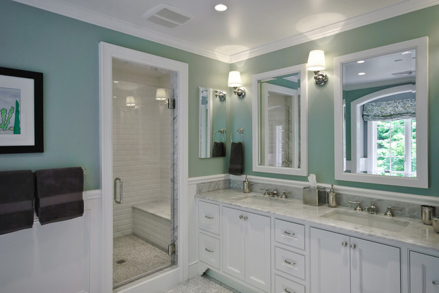 Kitchen and Bath in a Mt. Kisco Colonial traditional-bathroom