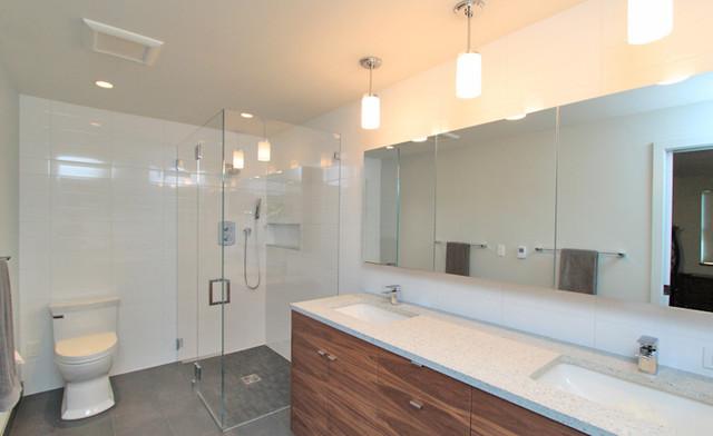 Kitchen & Bath Remodel contemporary-bathroom