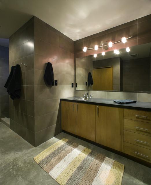 Lake House modern-bathroom