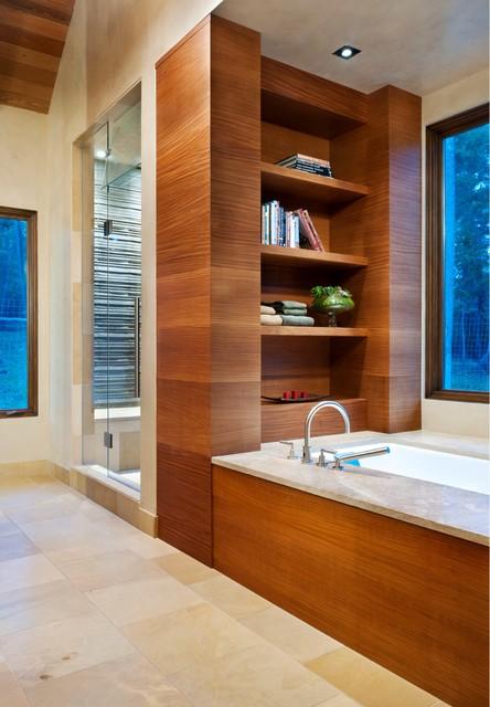 Library Bath contemporary-bathroom