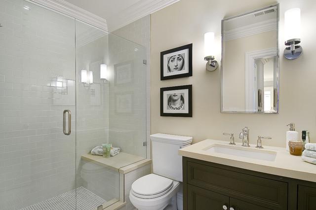 Lower Bathroom traditional-bathroom
