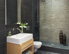 Luxury Bathroom contemporary bathroom