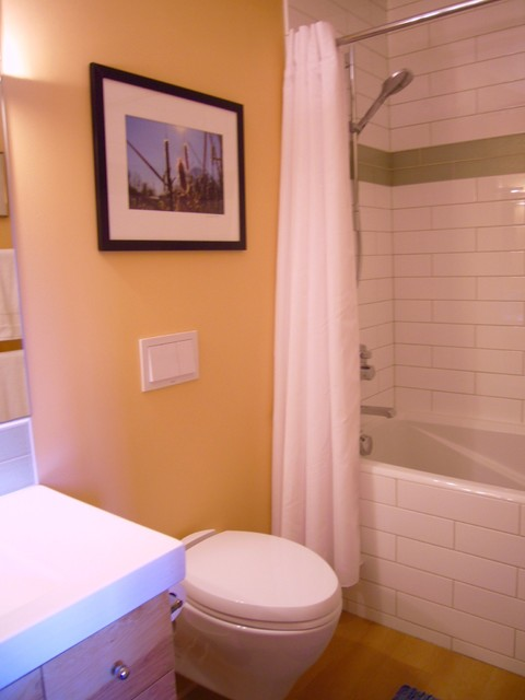 Main And Master Bathroom Remodeling St Paul Mn