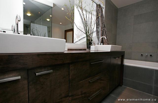 Main Bath contemporary-bathroom