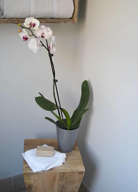 Master bathroom classique chic salle de bain other - Salle de bain classique chic ...