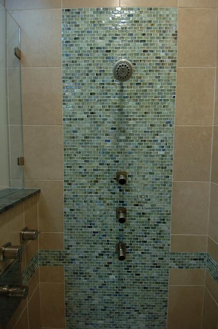 Master Shower contemporary-bathroom