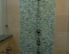 Master Shower contemporary-bathroom