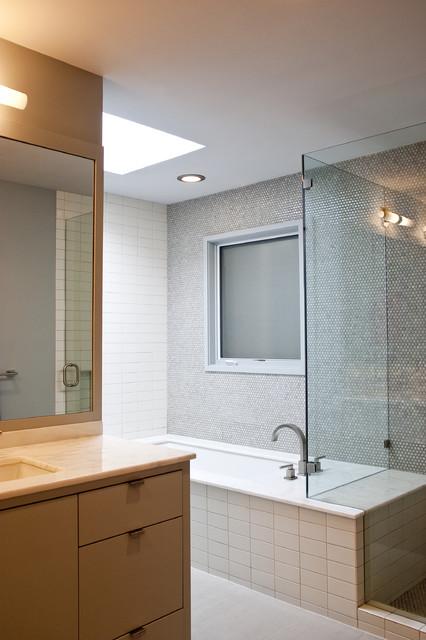 Modern Bath modern-bathroom