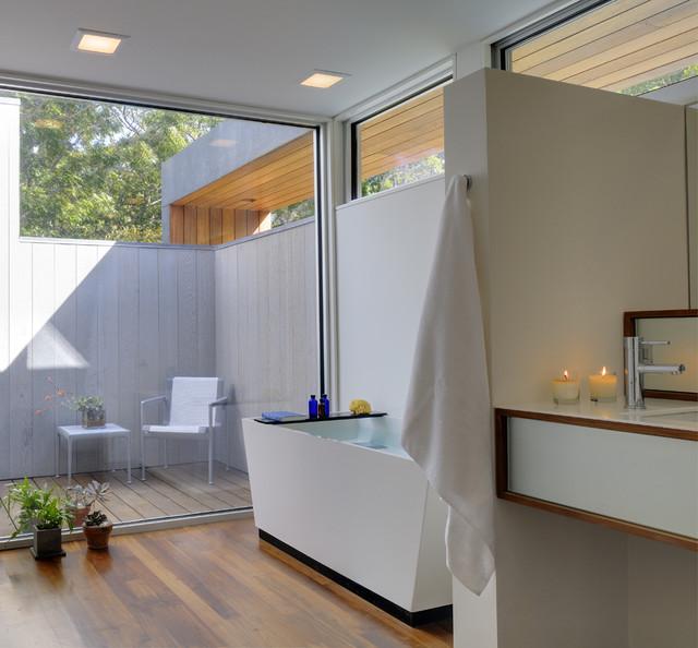 Lions Head modern-bathroom