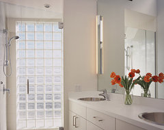 Feldman Architecture modern bathroom
