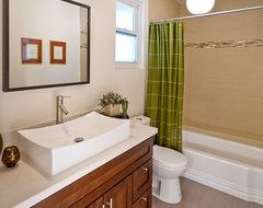 Modern Guest Bath Style modern-bathroom
