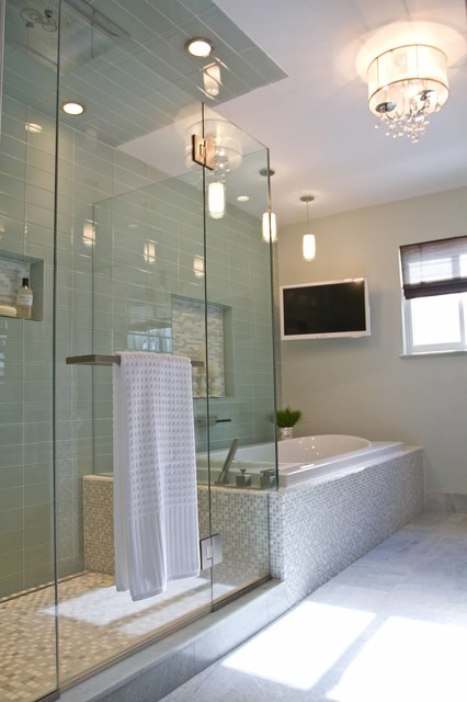 Transitional Master Bathroom Ideas : Modern luxury master bath transitional bathroom