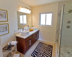 Modern Master Bath Style modern-bathroom