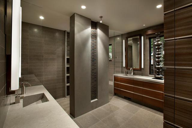 Modern mountain lake tahoe contemporary bathroom phoenix by imi design llc - Bathroom design games ...