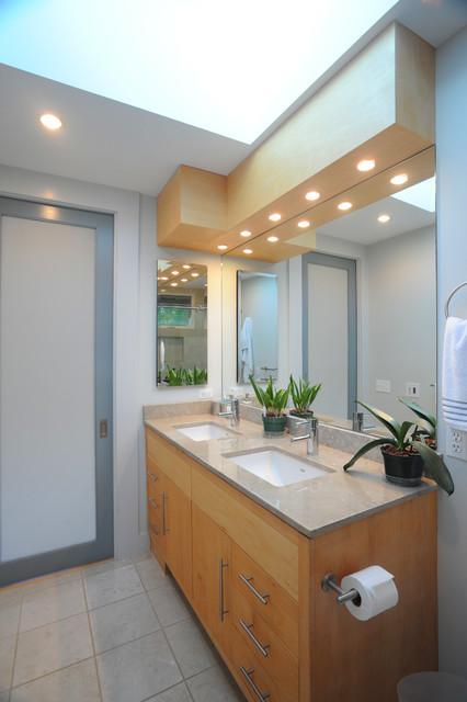 Mt. Pleasant Rooftop Addition modern-bathroom
