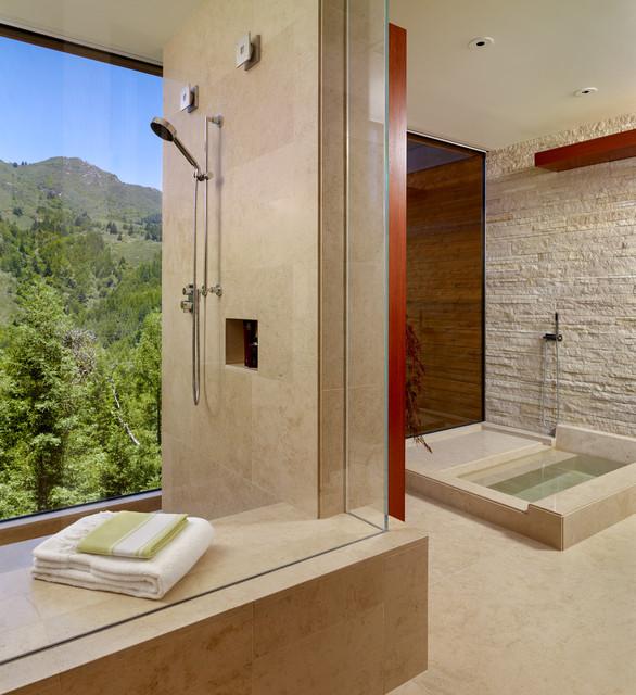 Mt Tamalpais Residence Contemporary Bathroom San