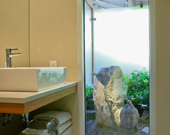Full-Tilt Reinvention for a 1950s Ranch contemporary-bathroom