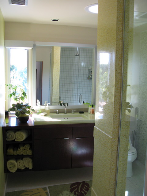 Nelson/Lowery Residence contemporary-bathroom