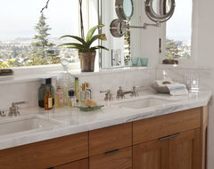 North Berkeley Hills Bathroom Remodel traditional bathroom