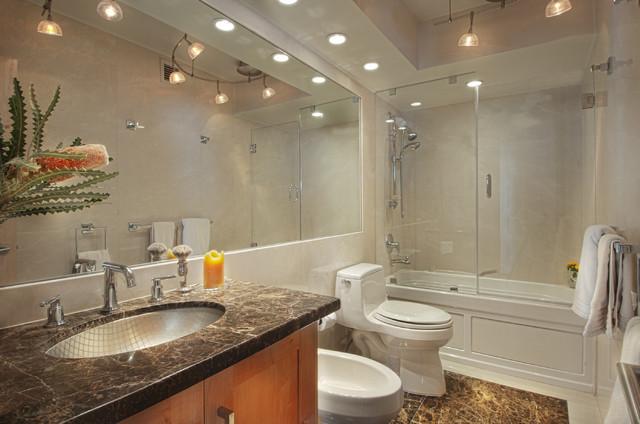 Ocean Avenue Penthouse contemporary-bathroom