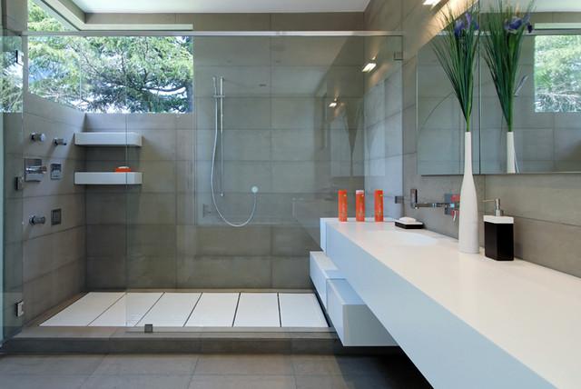 Palo Alto house 1 contemporary-bathroom