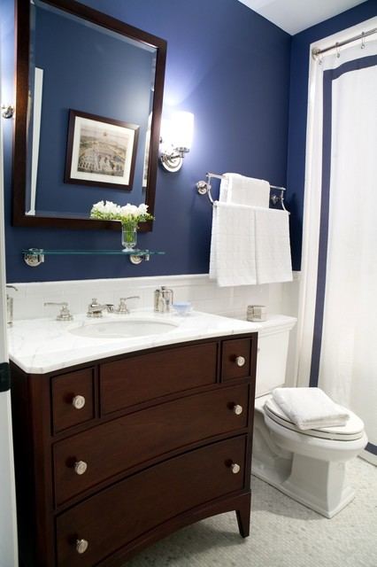 Palos Park Guest Bath traditional-bathroom