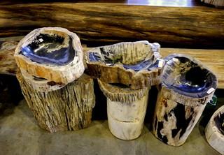 Petrified Wood Sinks rustic-bathroom