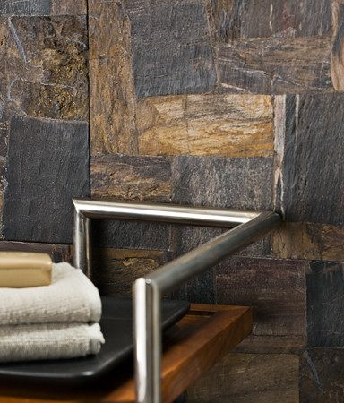 Petrified Wood Tile eclectic bathroom tile