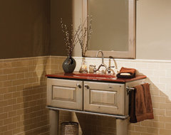 Plunge in Powder Room traditional-bathroom