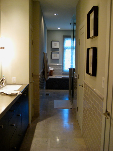 Prairie Street Townhouse Chicago traditional-bathroom