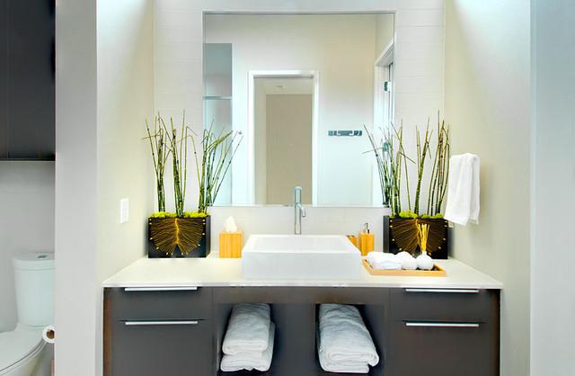 Richardson Project modern-bathroom