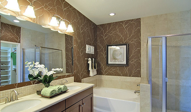 Richmond American Homes Tucson contemporary bathroom