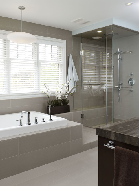 Contemporary master bathrooms home decorating excellence for Small bathroom design houzz