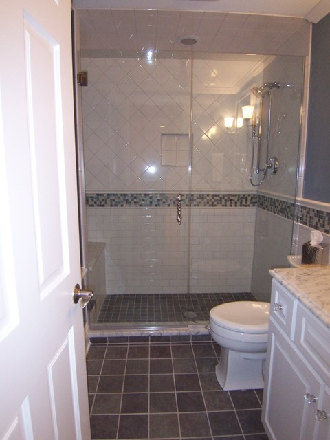 River forest basement traditional bathroom chicago for Forest bathroom ideas