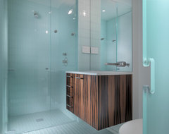 Russian Hill Apartment modern bathroom