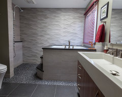 Bachelor's Suite contemporary-bathroom