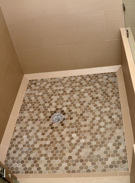 Shower Floor Contemporary Bathroom