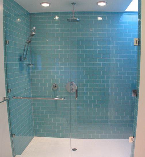 Shower contemporary bathroom