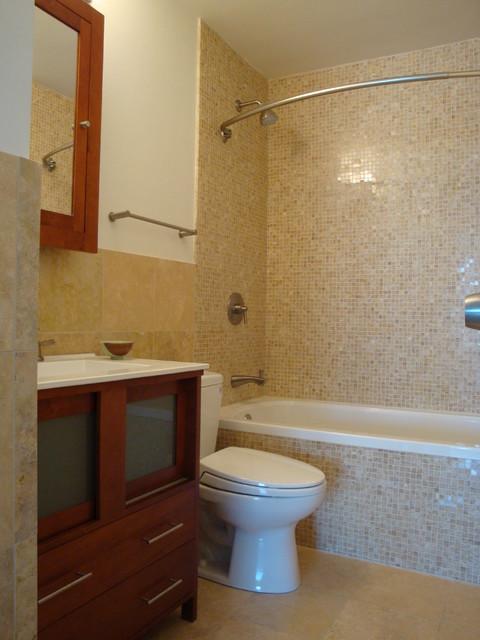 Small Bathroom In Lincoln Park Condo Contemporary Bathroom