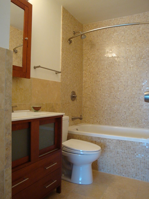 small bathroom in lincoln park condo contemporary